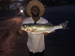 Lake Wateree Striper