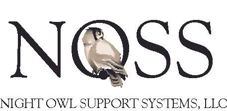 NOSS logo.jpg