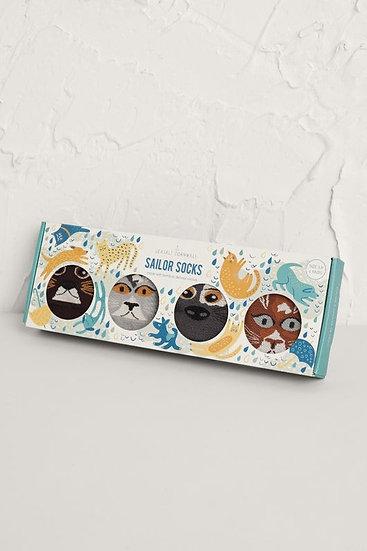 Seasalt - Raining Cats & Dogs socks