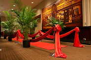 Theme decor red carpet entrance