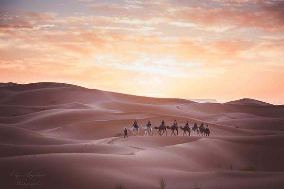Lost in the desert. Sahara delight.