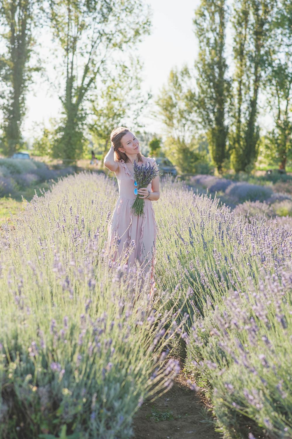 photo shoot in Italy, фотосессия в лавандовых полях в Италии