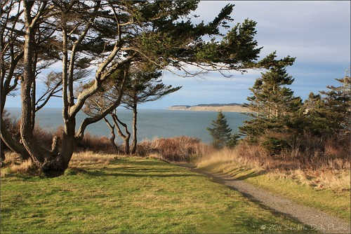 Fort Casey_ Hiking trail