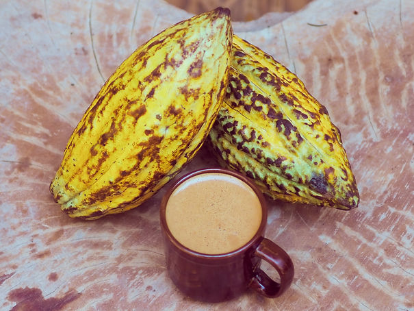 Cacao Source Stock_10.jpg