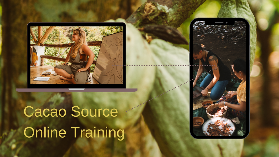 Cacao Source Online Training.png