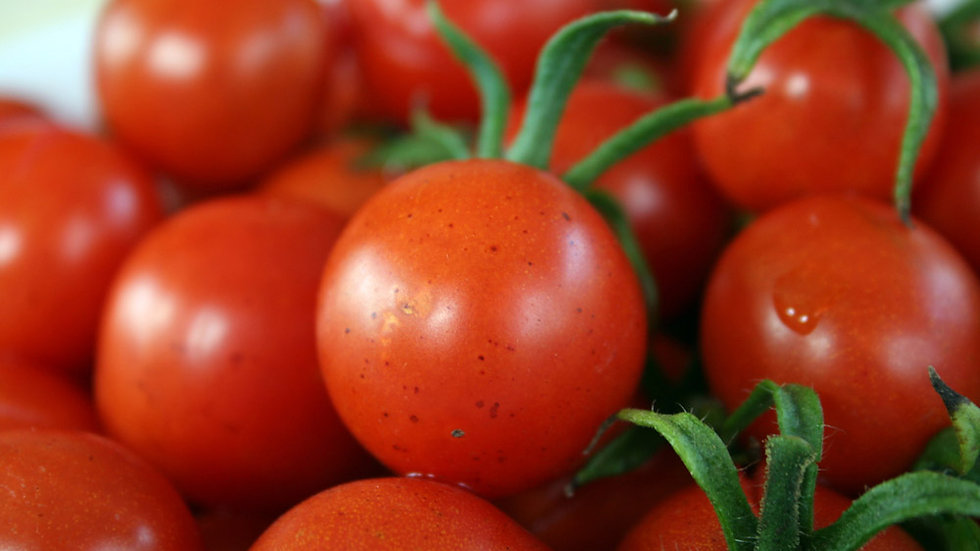 Tomate grappe 1KG