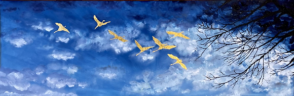 Flight: On Looking Up.