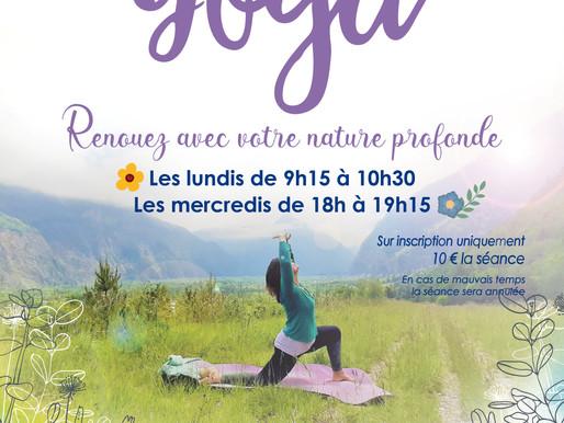 Cet été, c'est Yoga en plein air !