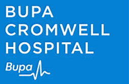 Paediatrician in London at Bupa Cromwell Hospital