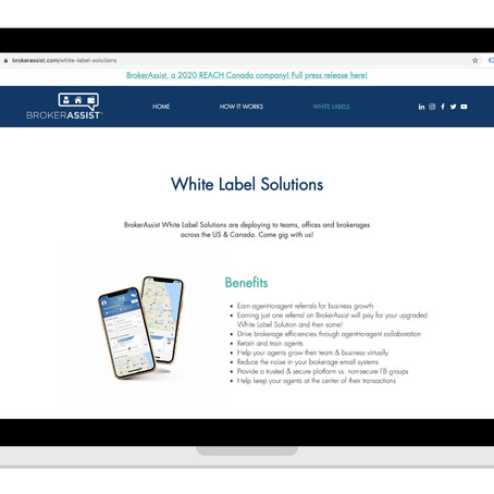 Why Go White Label for Your Team, Office or Firm?