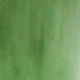 n°25 Vert pré