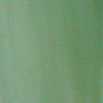 Vert bleu pâle
