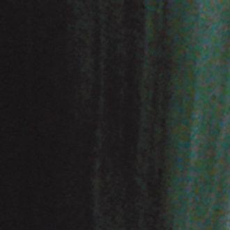 n°42 Vert canard