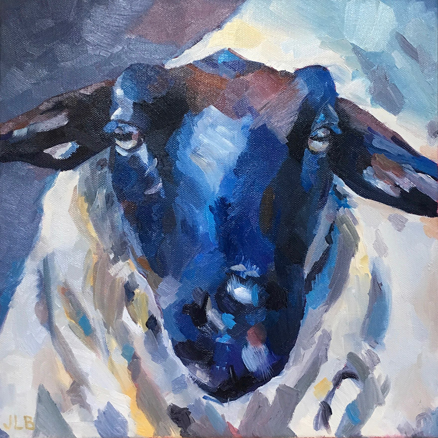Sheep   oil on canvas. 12x12