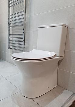 Viola toilet.jpg