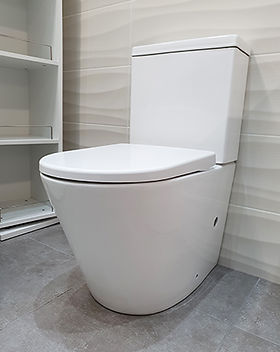 zoe toilet.jpg