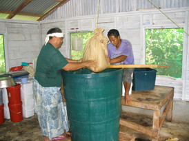 Nonu Samoa - humble beginnings