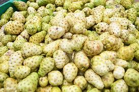 Nonu Samoa Nonu Fruit bunches.jpg