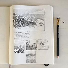 I never used to keep a sketchbook. I kne