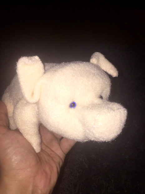 Schwein HiG
