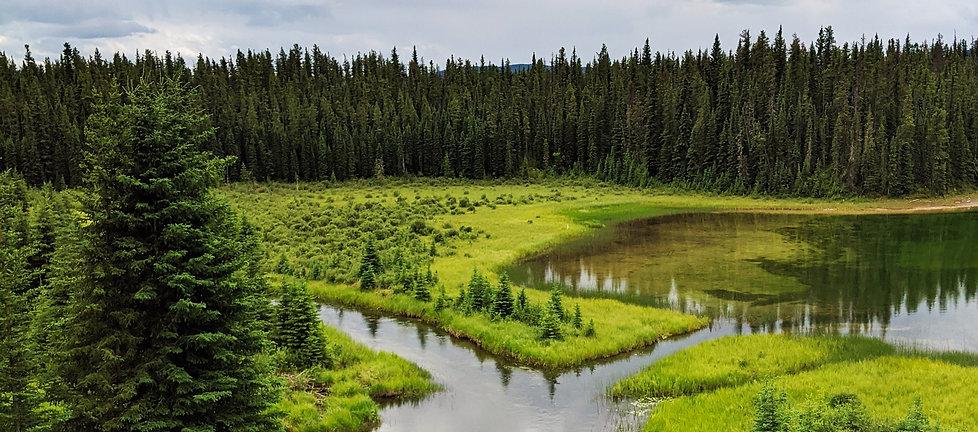Gaia-Stake-Pool-Cardano-Lake-Hinton-Smal