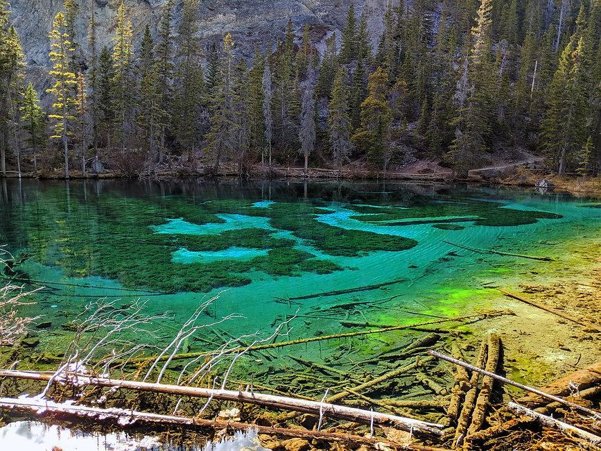 Grassi-Lake-Gaia-Stake-Pool-Cardano-Land