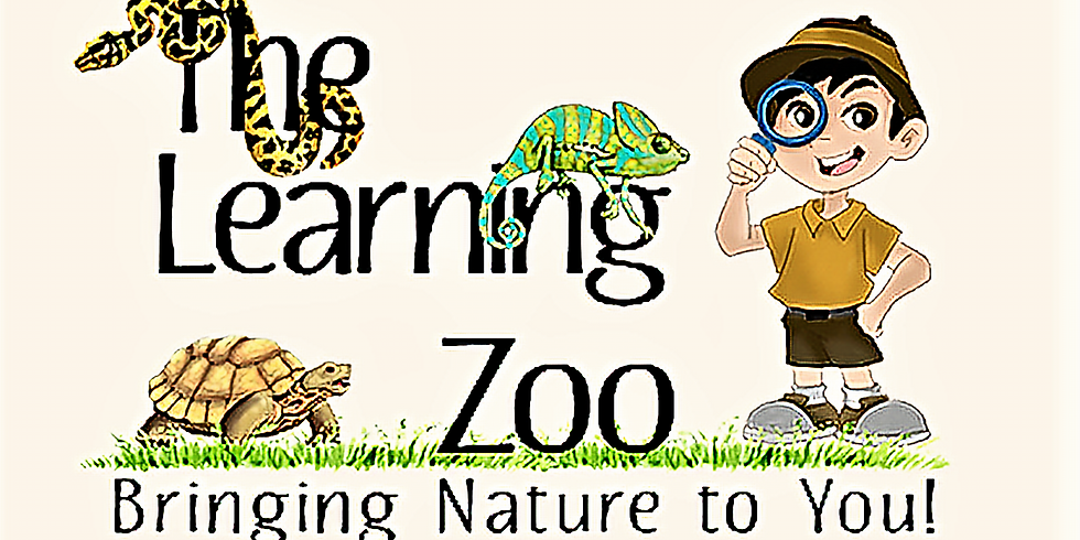 The Learning Zoo Field Trip