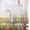 Thumbnail: Métier 06