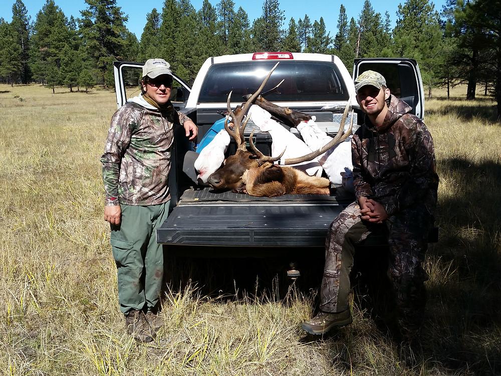 Elk Guiding Unit 10 New Mexico