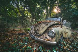 Herbie goes rusty