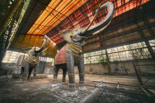Cimetière des éléphants