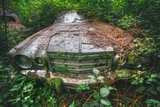 Chrysler au vert