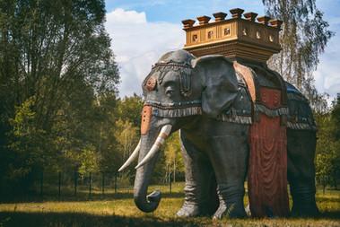 ELEPHANT-FINAL-FINAL-WIX.jpg