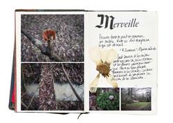 Histoires Naturelles - Adelap