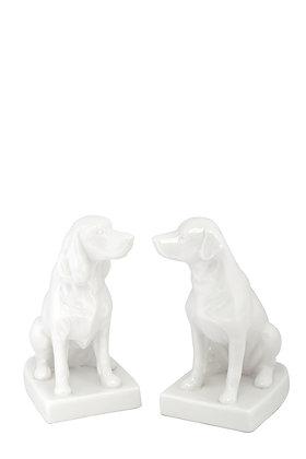Köpek Biblo 2'li Set