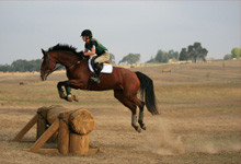 Vayeitze | Leaping Over Obstacles