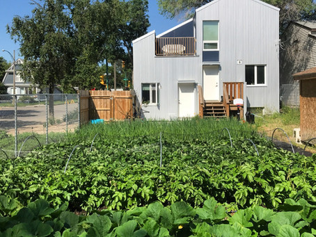 How much money is a vegetable garden worth?