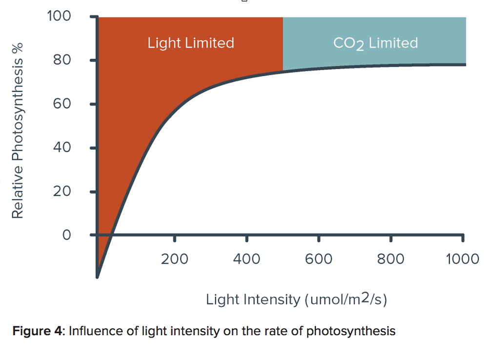 Graph showing influence of light intensity on the rate of photosynthesis