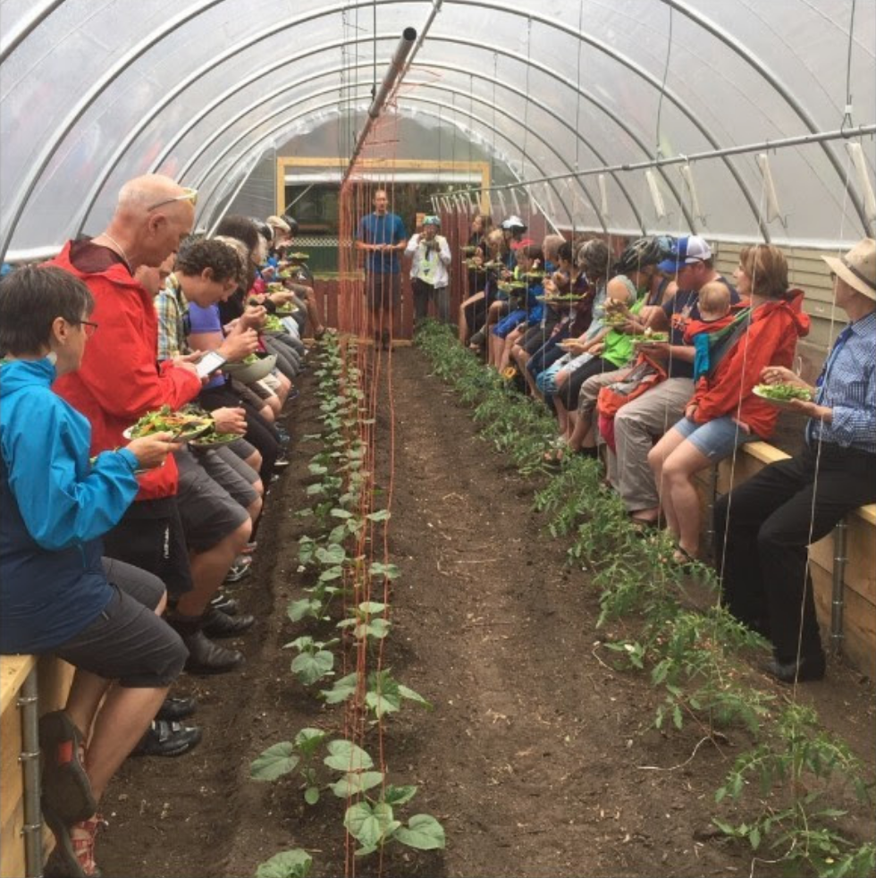 Cyclists enjoy a salad in greenhouse.