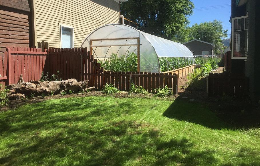 backyard vegetable garden with greenhouse