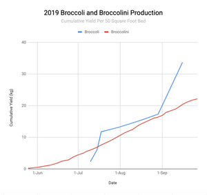 Graph of broccoli harvest from vegetable garden.