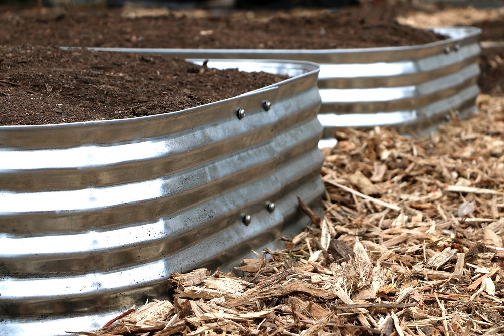 galvanized raised beds in the vegetable garden