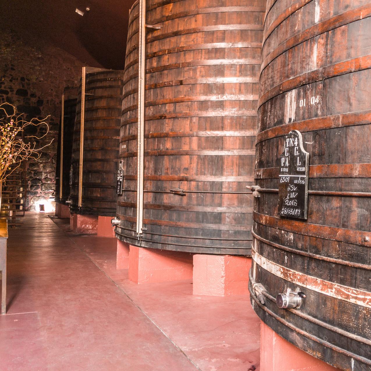 Churchill's Vintage Port Cellars