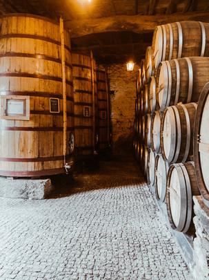 Douro Valley Wine Cellar