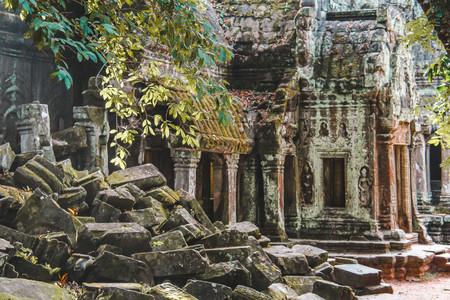 Ta Prohm Temple_1