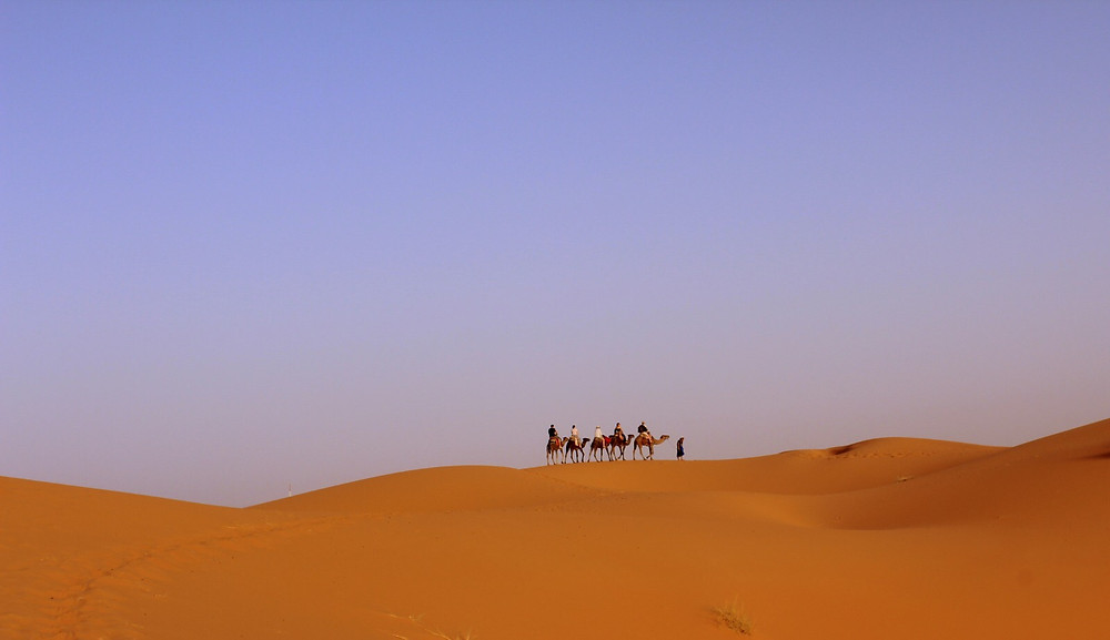 Day 2 - Camel Ride in Merzouga