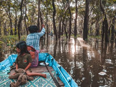 Kampong Phluk Mangrove Forest