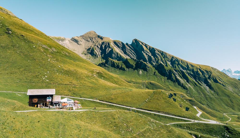 Grindelwald First Landscape 2