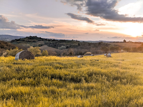 A Tuscan Farmhouse Experience - Feel The Warmth Of Family