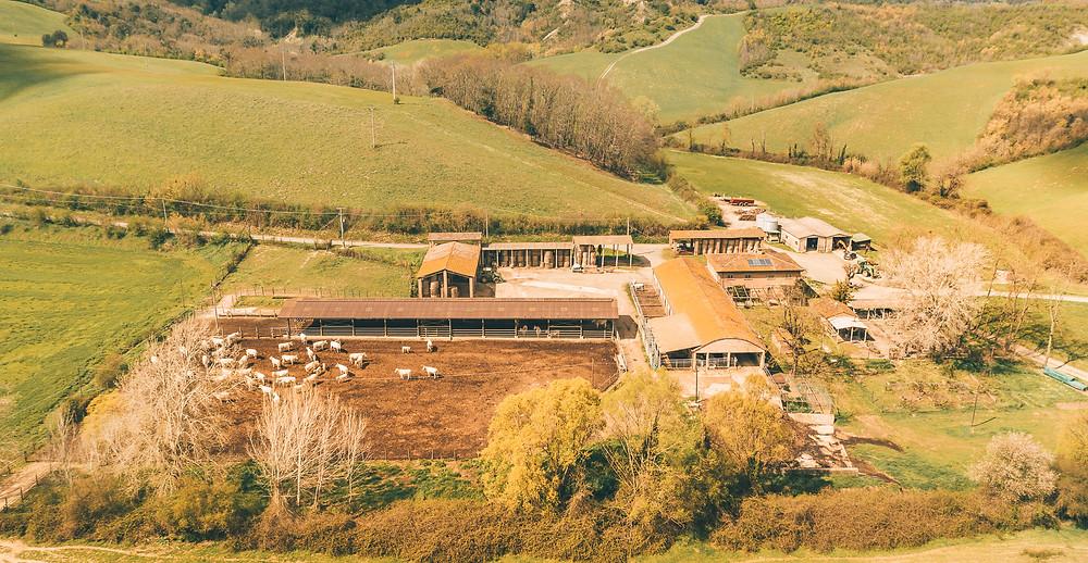 Tuscan Farmhouse - Barbialla Nuova